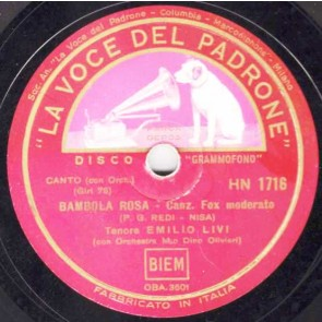 Bambola Rosa cover