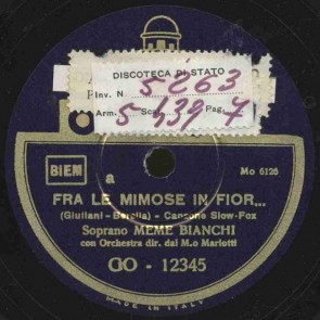Fra le mimose in fior