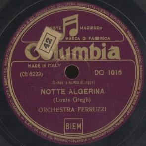 Notte algerina