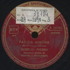 Pallida mimosa
