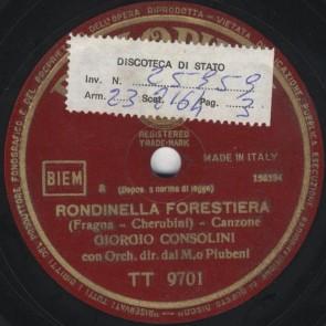 Rondinella forestiera