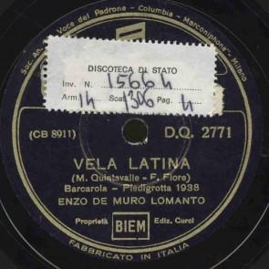 Vela latina