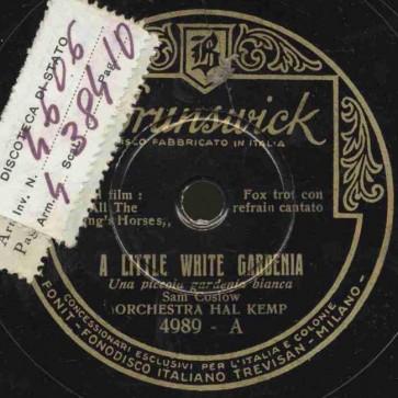 A little white gardenia