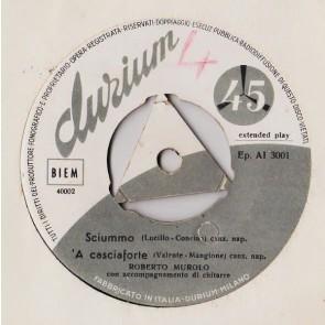 'A Casciaforte cover