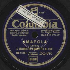 Amapola