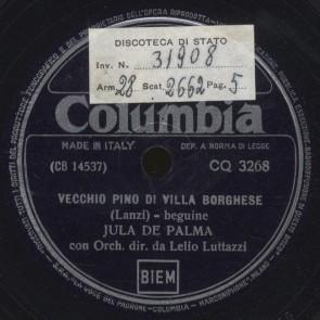 Vecchio pino di Villa Borghese
