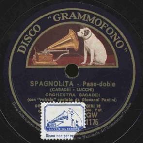 Spagnolita